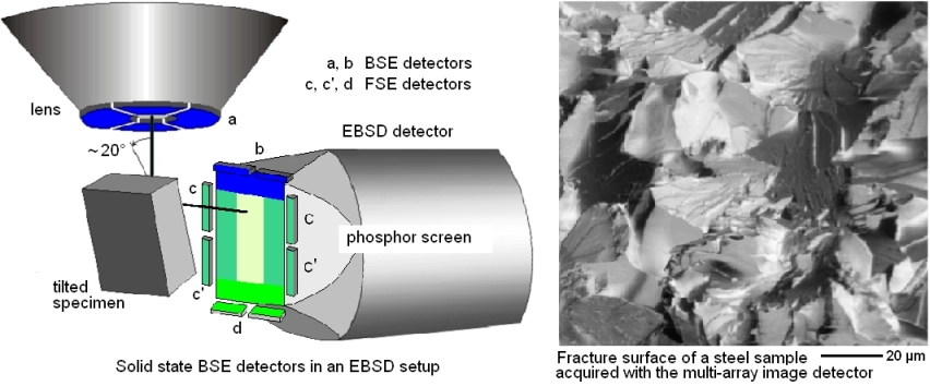 EBSD multiarray image detector